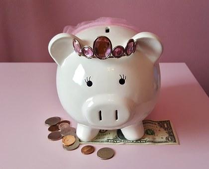 piggy-bank-1446874__340